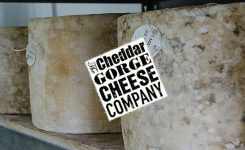 Bringing cheese to life for The Cheddar Gorge Cheese Company_